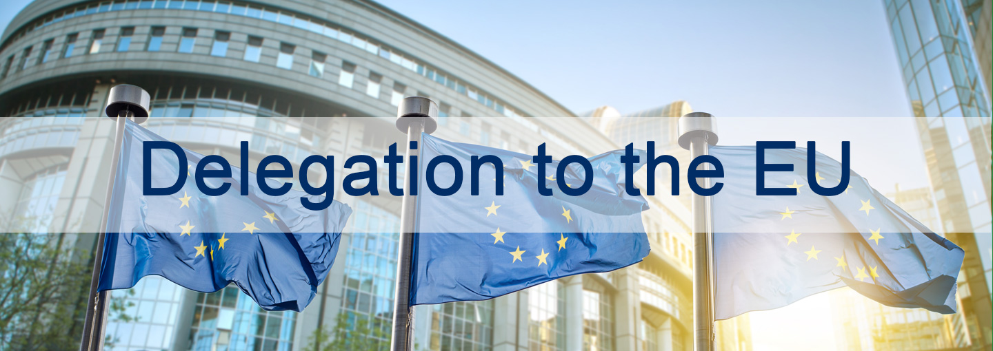 Discover the Delegation to the EU